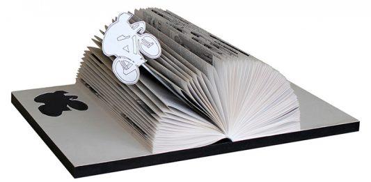 LiberoLibroEssegi, rivisitazione del libro
