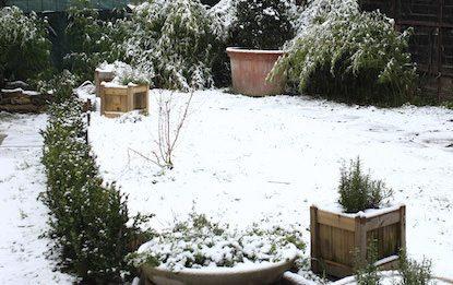 Giardino d'inverno. L'economia del dono.