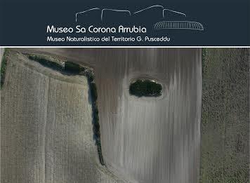 Francesco Cubeddu – Serendipità