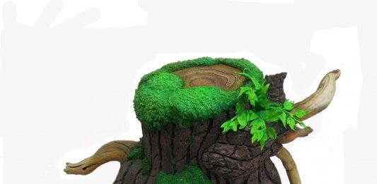 Arte e Ecosostenibilità