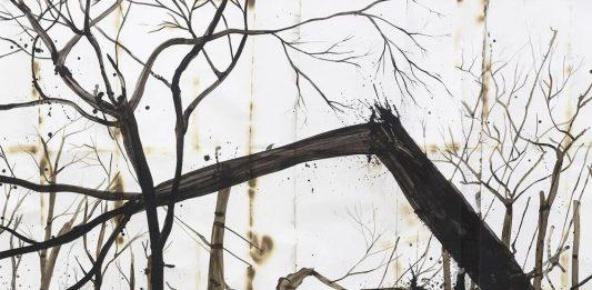Denis Riva – Cambio di Muta
