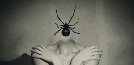 Le camere oscure: fotografie, figure e ambienti dell'immaginario neogotico