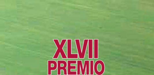 XLVII Premio Vasto d'arte contemporanea – L'icona ibrida
