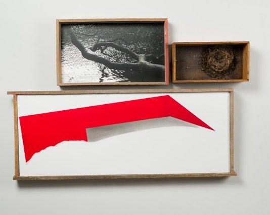 Fausta Squatriti – Memento Mori