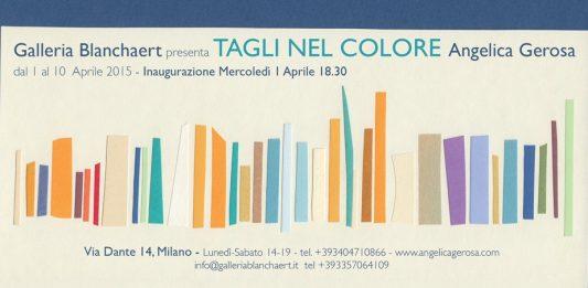 Angelica Gerosa – Tagli nel colore