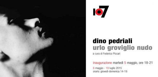 Dino Pedriali – Urlo – Groviglio – Nudo