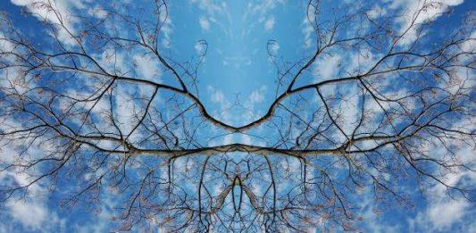 Maria Rebecca Ballestra – Journey into Fragility