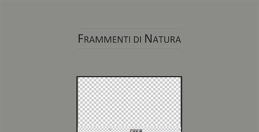 Frammenti di natura