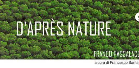 Franco Passalacqua – D'après Nature