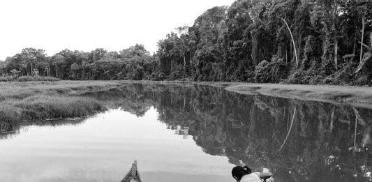 Pino Ninfa – Dal cibo all'energia. Un viaggio in Amazzonia