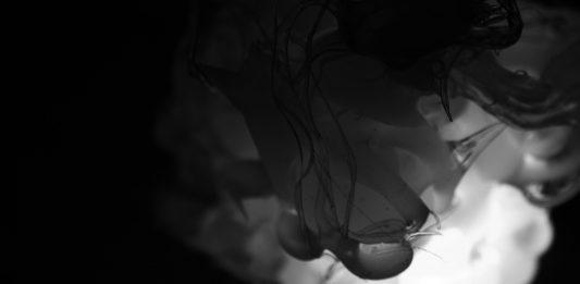 Matteo Agarla – Light And Shadow