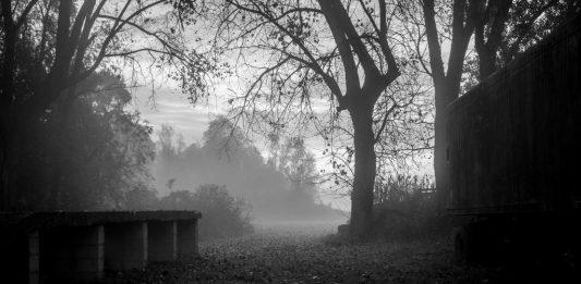 Maurizio Callegarin – Il valore dell'ombra