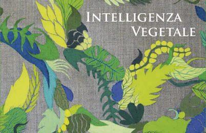 Gola Hundun – Intelligenza Vegetale