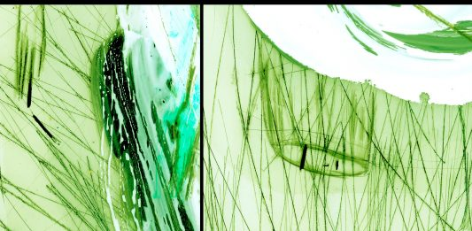 Il sogno verde