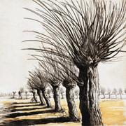 Natura in foglio. Paesaggi e visioni nell'incisione contemporanea
