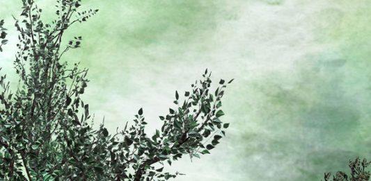 Filippo Armellin – The Blank Interior