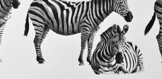 Giorgia Oldano / Charlotte Poulsen – Altri animali tra realismo e fantasia