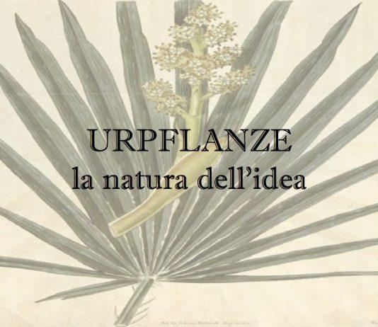 Urpflanze. La natura dell'idea