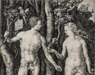 Albrecht Dürer – Come avrò freddo dopo tutto quel sole…