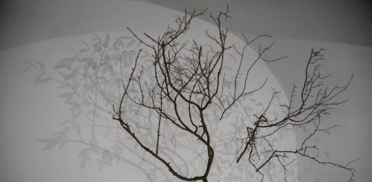 Alessandro Lupi – Lights and Shadows