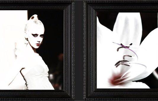 BAM Piemonte Project 7: MODO. La moda nell'arte, l'arte nella moda