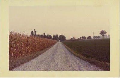 Sulla via Emilia. Esplorazioni di una storia