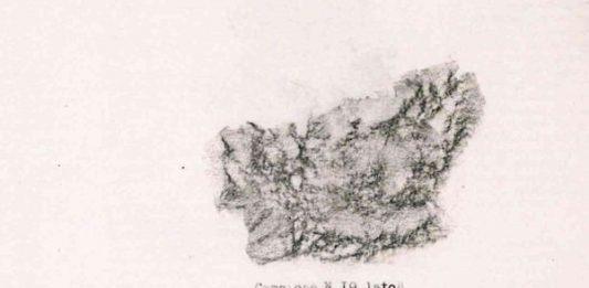 Mariateresa Sartori – Per caso e per necessità