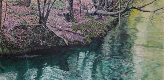 Fabio Basso – Naturalia. Il richiamo della terra