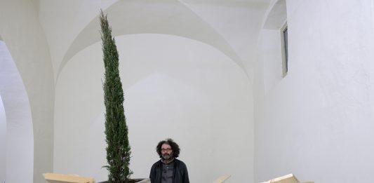 Giovanni Termini – Innesti
