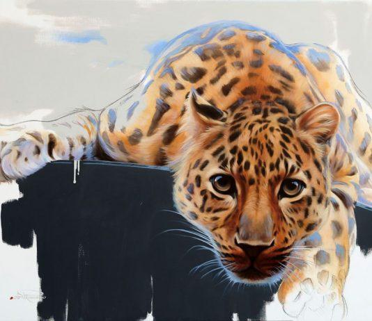 Dario Romano – Animal's World
