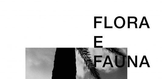 Filippo Boccini – Flora E Fauna