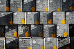 Lucrezia Roda – Steel-Life