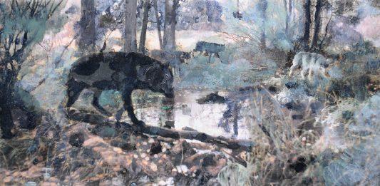 Dacia Manto – La pelle del lupo