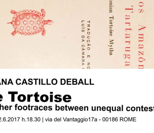 Mariana Castillo Deball – The Tortoise and other footraces between unequal contestants