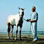 Marino nell'immagine di Aurelio Amendola (1968-1975)