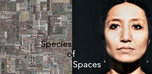 Colin Dutton / Andreas Fischbach – Species of Spaces