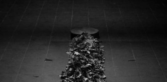 Gian Luca Bianco – Imbilico: perpetua motus terra