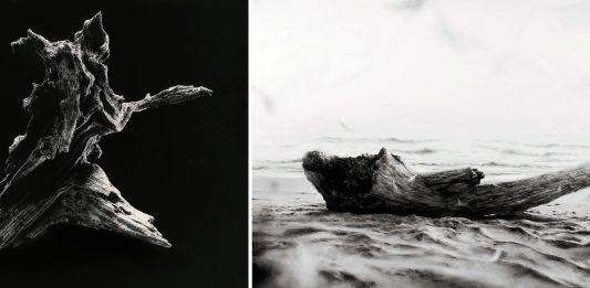 Yamamoto Masao / Ettore Frani – La misura dell'inespresso