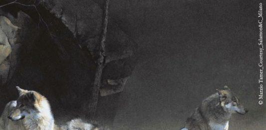 Marzio Tamer – Pittore per Natura