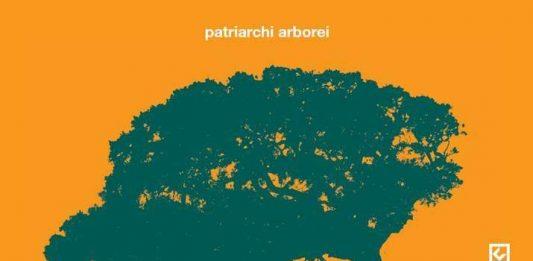 Andrea Mori – Patriarchi arborei