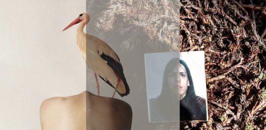 Montserrat Diaz / Alexi Paladino – I Declare My Shadow