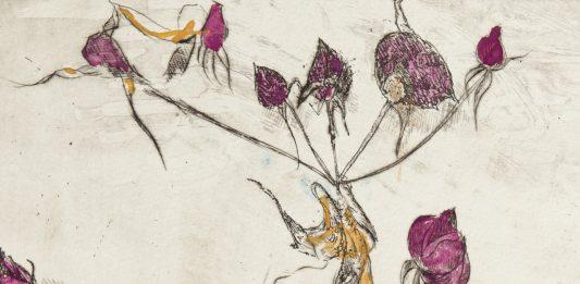Tino Aime – Il giardino fragile