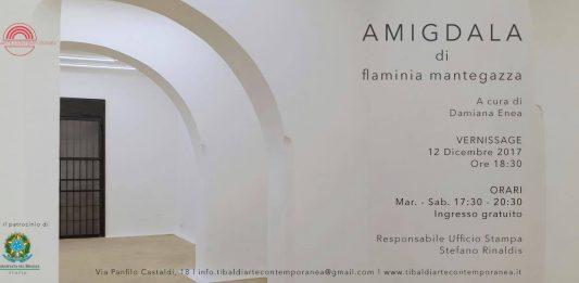 Flaminia Mantegazza – Amigdala