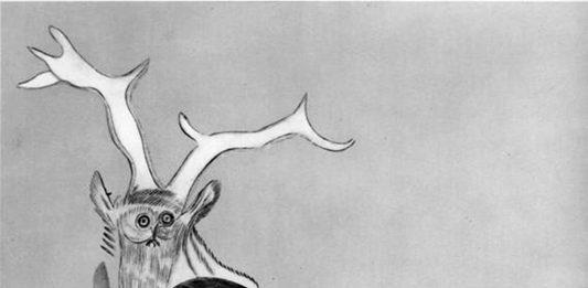 Namsal Siedlecki – White Paper