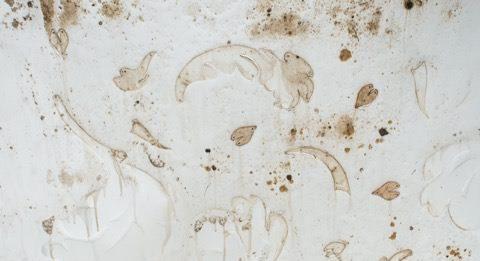Claudio Maccari – Wallpaper