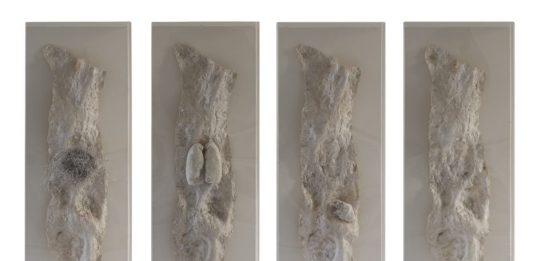Giacomo Rizzo – Interior Sculpture , Scultura Interiore