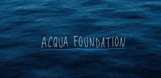 Acqua Foundation: Michael Wang