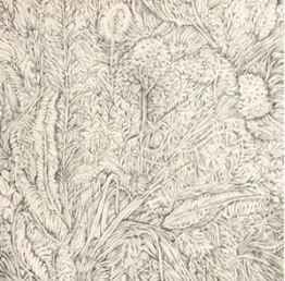 Antonella Bassenghi  – Drawings