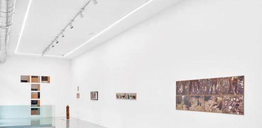 Gina Pane dalle collezioni italiane. Opere dal 1968 al 1988