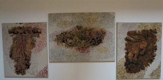Rassegna Biennale Fiber Art. Conoscere